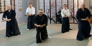 Samurai Iai (居合)