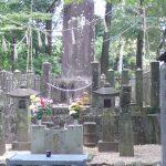 Japan Nov 2010 063