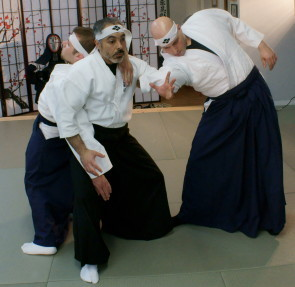 Daitō ryū Aikibudo classes
